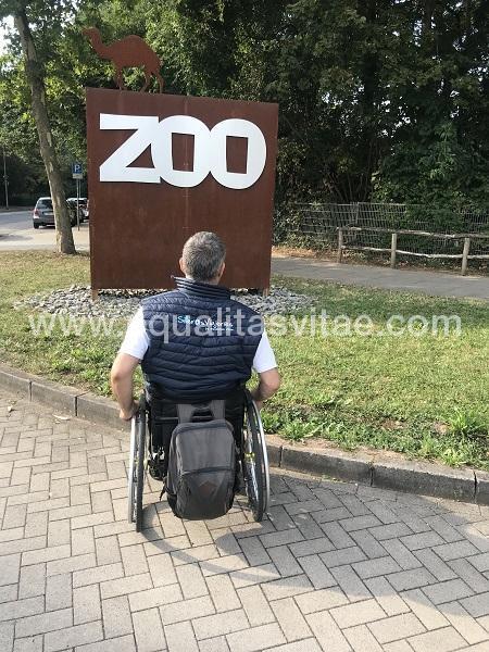 imagen principal de ZOO DE LANDAU