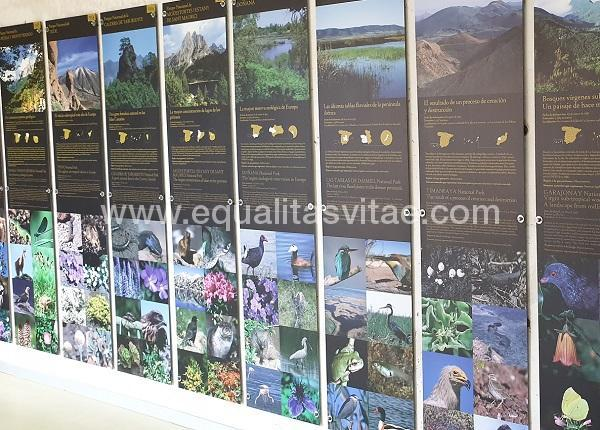 imagen principal de CENTRO DE VISITANTES DE HORCAJO DE LOS MONTES