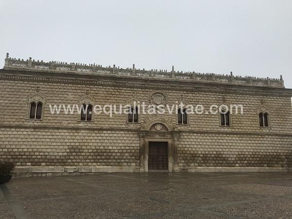 imagen principal de PALACIO DUCAL-PALACIO DE LOS DUQUES DE MEDINACELI