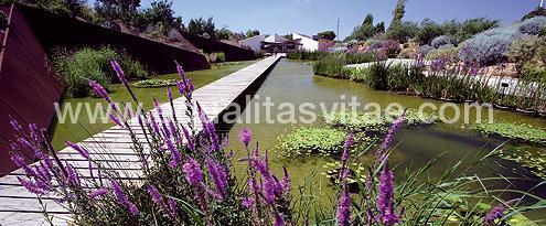 Jardin botanico de barcelona accesible en barcelona barcelona - Jardines de montjuic ...