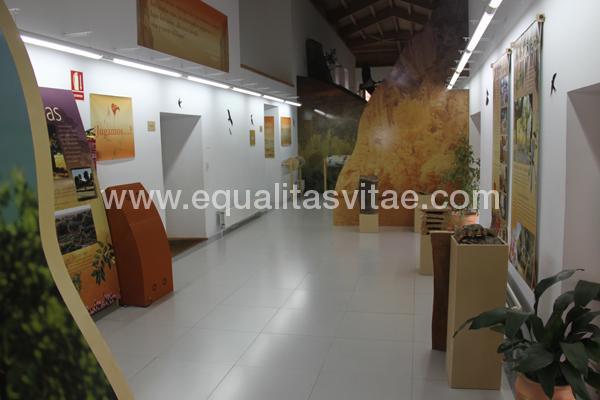 imagen principal de CASA DEL PARQUE ARRIBES DEL DUERO