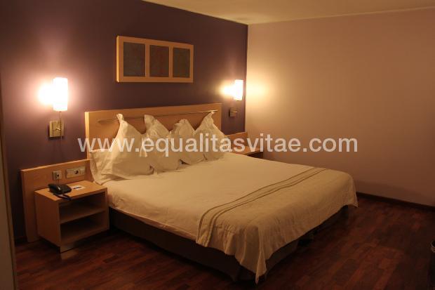imagen principal de HOTEL ACTA ARTHOTEL ANDORRA