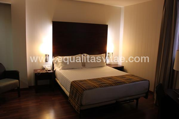 imagen principal de HOTEL GRAN ULTONIA