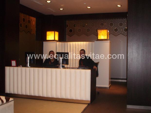 imagen principal de HOTEL LOLA