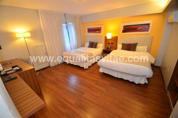 imagen principal de HOTEL BICENTENARIO SUITES SPA