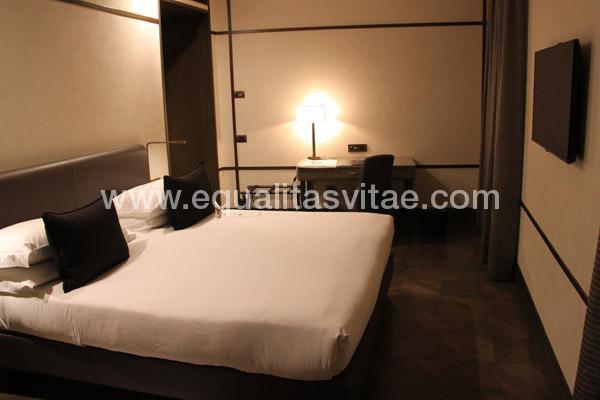 imagen principal de HOTEL BALESTRI
