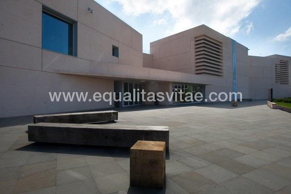 imagen principal de MUSEO UNIVERSIDAD DE NAVARRA