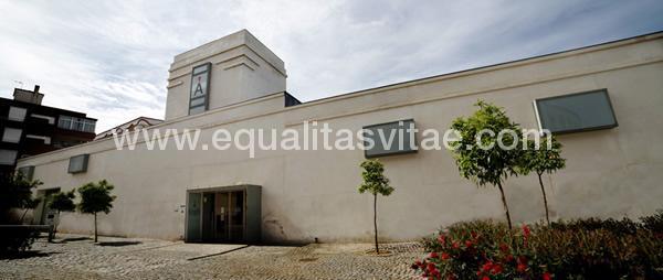 imagen principal de MUSEO DE LAS CIENCIAS DEL VINO ALMENDRALEJO