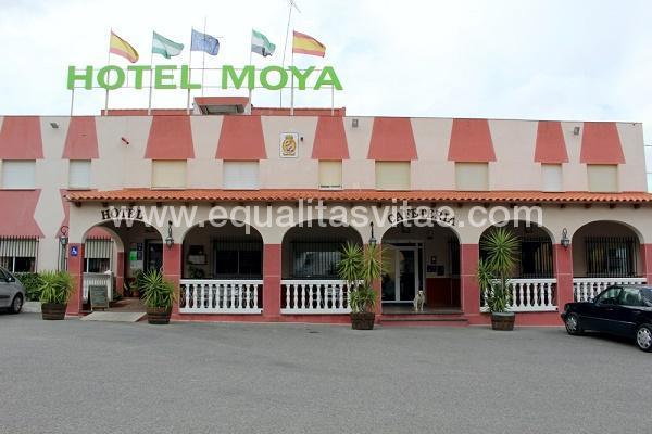 imagen principal de HOTEL MOYA