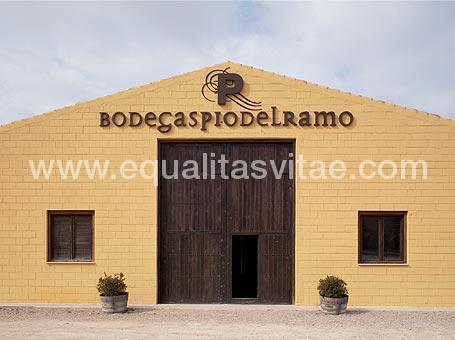 imagen principal de BODEGAS PIO DEL RAMO