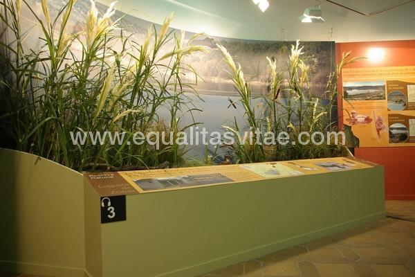imagen principal de CENTRO DE VISITANTES LOS VILLARES