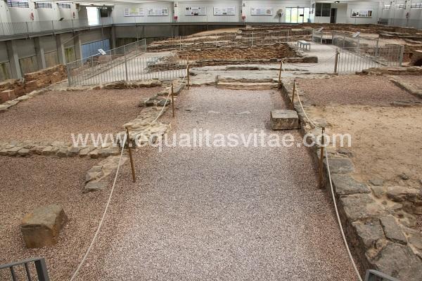 imagen principal de MUSEO Y YACIMIENTO ARQUEOLÓGICO DE ARELLANO