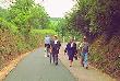 imagen de Via Verde de La Calamocha