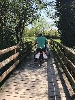 imagen de Hay numerosos puentes como éste en el sendero