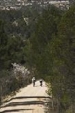 imagen de Vía Verde Val del Zafán: Vía verde accesible discapacitados Teruel
