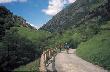 Senda del Oso. V�a verde accesible discapacitados Asturias