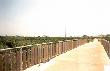 imagen de Vía Verde Safor. Vía verde accesible discapacitados Valencia
