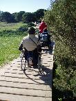 imagen de Sendero adaptado para personas con discapacidad. Charco de Boca