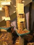 imagen de Material táctil, troncos de diferentes especies. Centro de Interpretación de Ansó.