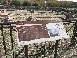 imagen de Panel interpretativo. Parque Arqueológico de Carranque.