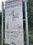 imagen de Panel interpretativo. Recópolis. Yaciemiento arqueológico.Zorita de los Canes.