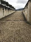 imagen de Rampa de acceso a nave de barricas y botellero. Bodega Otazu