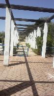 image of Inicio senderos accesibles del Jardín Botánico El Aljibe