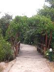 imagen de Sendero accesible en el Jardín Botánico