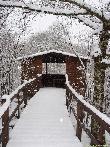 imagen de Bosque de Orgi en invierno