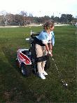 imagen de Golf adaptado