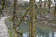 imagen de Sendero accesible bordeando el nacimiento del Ebro