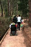 imagen de Usuario de silla de ruedas en sendero accesible Ricardo Codorniu